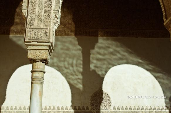 ValeriaAlvesdaFlorencia_ArabHeritage_09